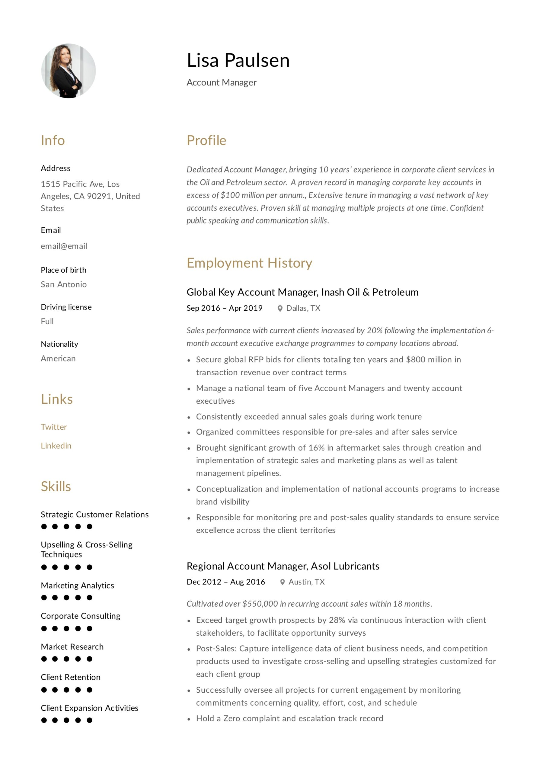 account manager resume writing guide examples technology lisa paulsen rite aid shift Resume Technology Account Manager Resume