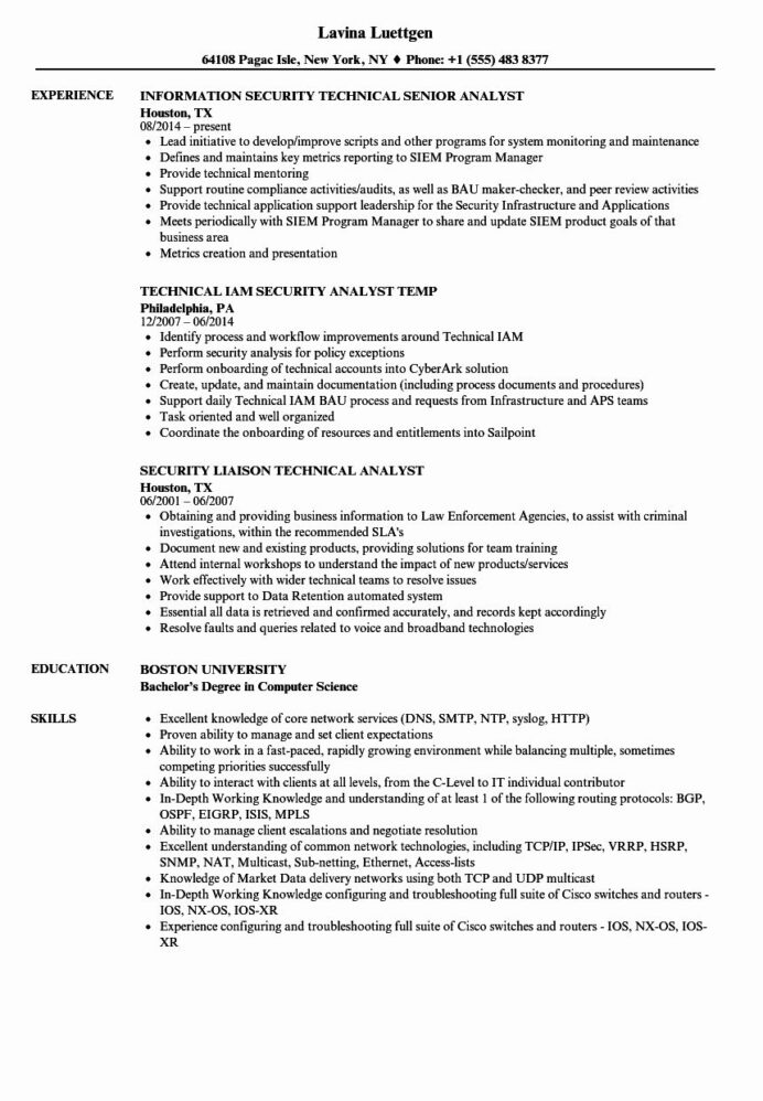 cyber security analyst resume luxury technical samples in job sailpoint support entry Resume Sailpoint Support Resume