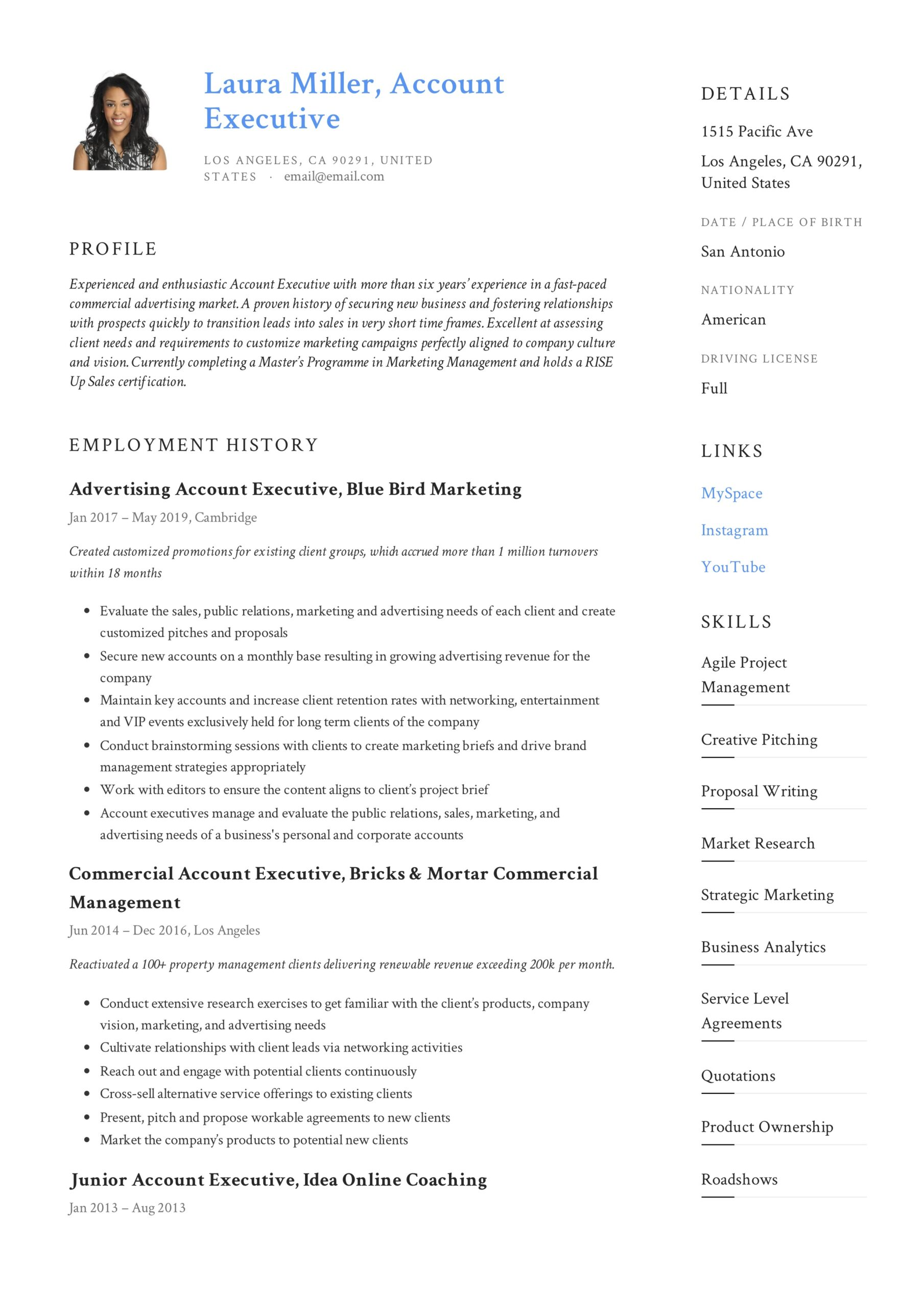 account executive resume writing guide templates pdf format example table of contents for Resume Account Executive Resume Format Download
