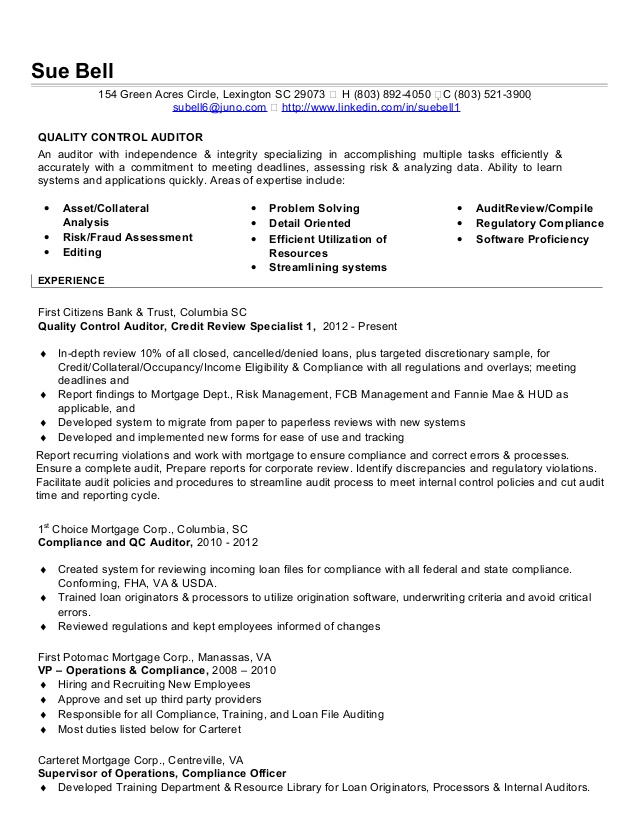 auditor resume bank audit experience for independent consultant samples administrative Resume Bank Audit Experience For Resume