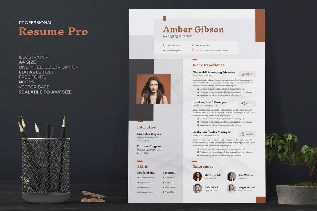 best cv resume templates design shack free template professional accountant emt elearning Resume Free Template Resume 2020