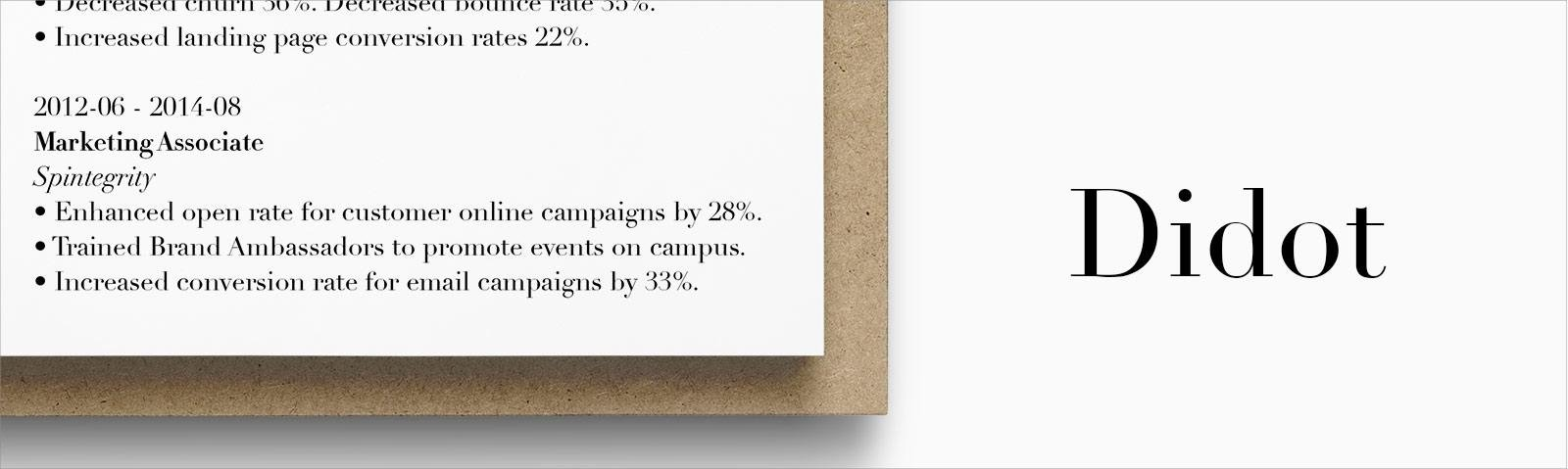 best font for resume size standard professional pairings didot executive template free Resume Best Font Size For Resume 2020