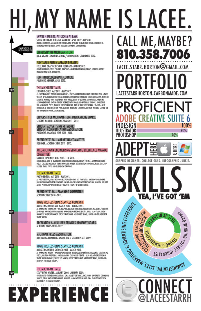 best infographic resumes monster resume template with pie chart lacee2 electrician Resume Resume Template With Pie Chart