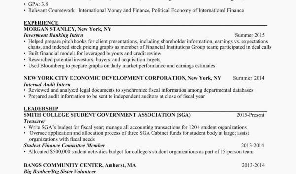 best of collection sample resume student government organization treasurer examples Resume Student Organization Treasurer Resume