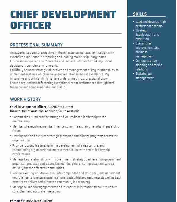 chief development officer resume example jewish family service seattle vendor auto parts Resume Chief Development Officer Resume