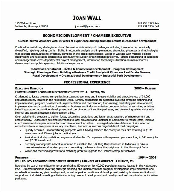 executive director resume non profit best of template re examples nonprofit nuclear Resume Nonprofit Executive Director Resume