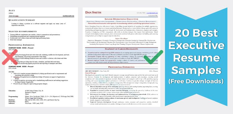 executive resume samples director vp level styles for executives acting layout aml Resume Resume Styles For Executives