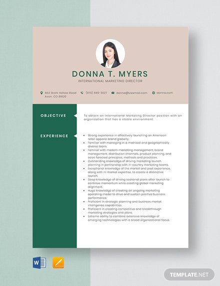 free designer resume cv template word indesign international marketing manager director Resume International Marketing Manager Resume