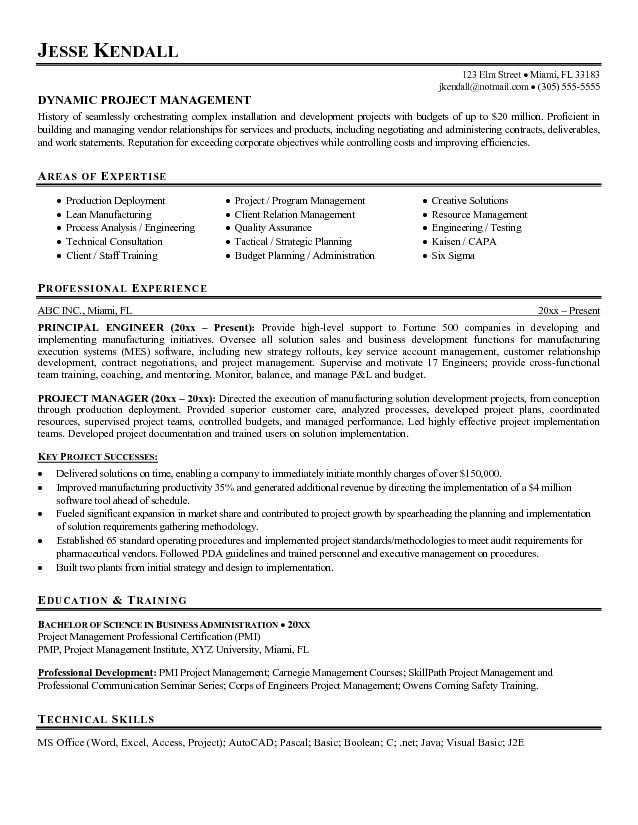 guerrilla resume profile examples google search project manager objective program sample Resume Program Manager Resume Sample