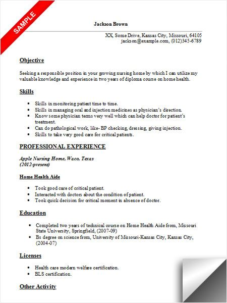 home health aide resume sample examples care everest college builder slp cfy entry level Resume Home Care Resume Examples