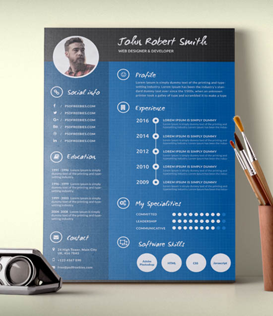 infographic resume templates free premium creative template title for experienced team Resume Creative Infographic Resume