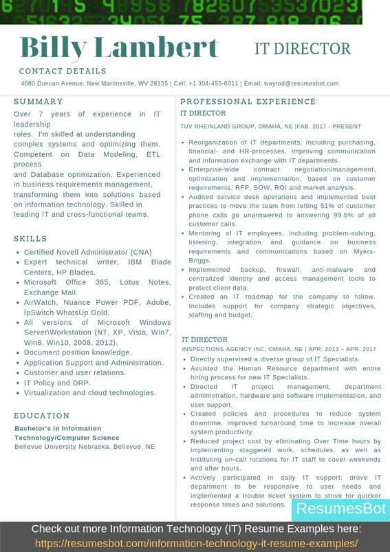 information technology director resume samples templates pdf resumes bot technical Resume Technical Resume Examples 2020