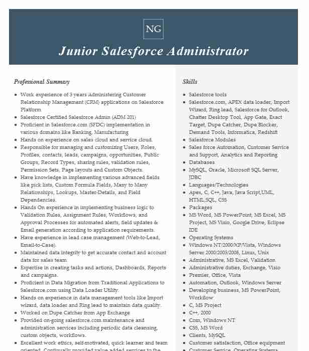 junior salesforce administrator resume example new packaging port richey sample for Resume Sample Resume For Salesforce Administrator