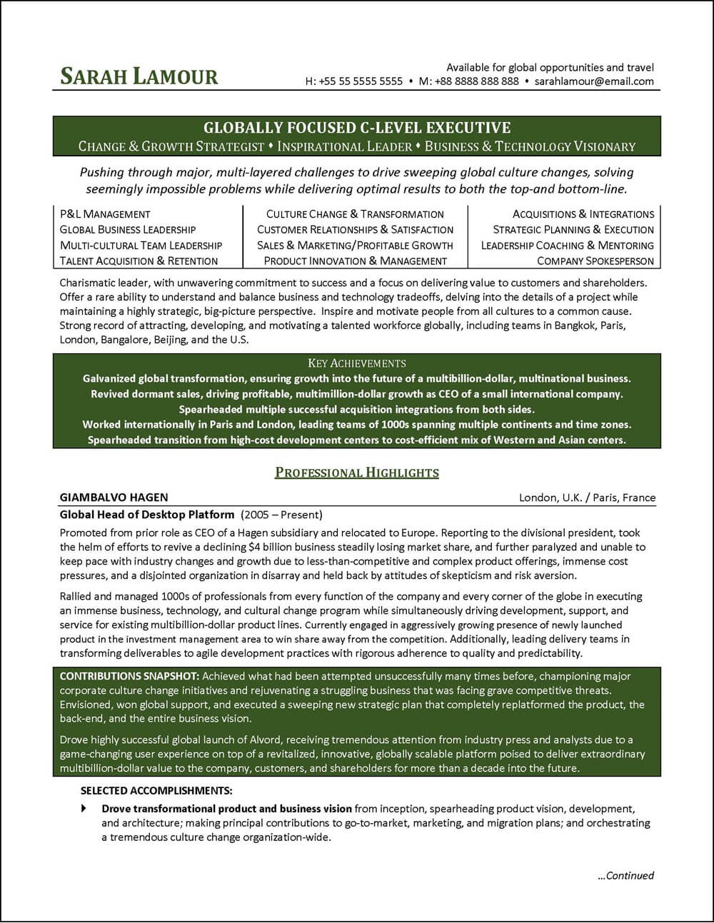 level executive resume example distinctive career services director examples meaning Resume Director Level Resume Examples
