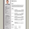 logistics manager cv template example job description supply chain delivery of goods Resume Delivery Director Resume