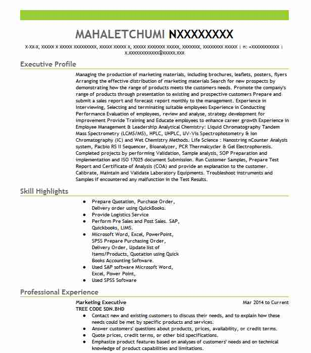 marketing executive resume example resumes livecareer architecture student format for Resume Marketing Executive Resume