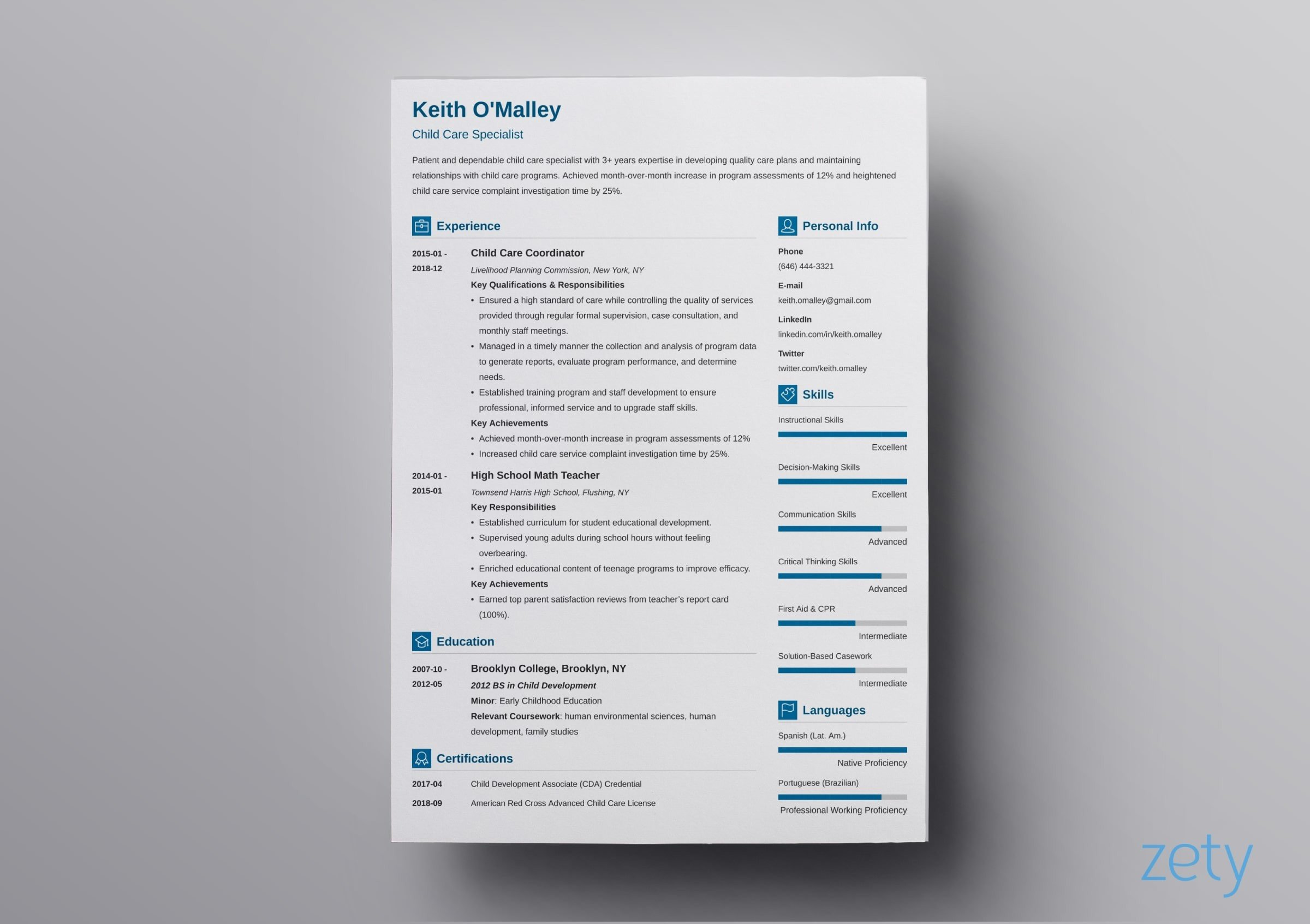modern resume template format examples for advanced concepts templates vibes veterinary Resume Advanced Resume Concepts