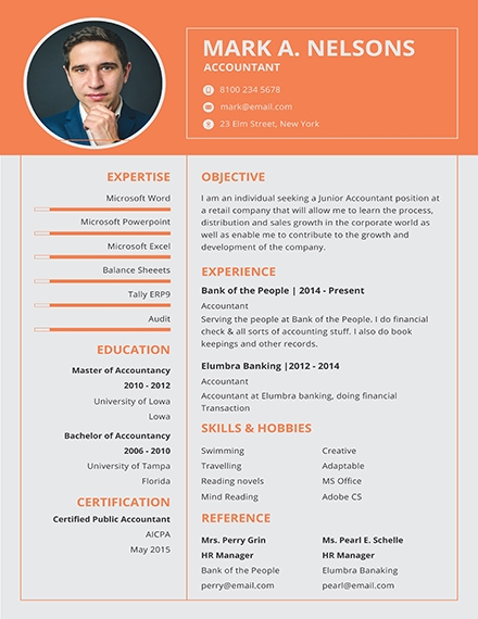 professional resume examples templates in word publisher photoshop indesign pdf Resume Professional Experience Resume