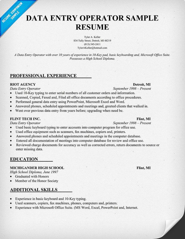 professional resume template job samples objective examples data entry operator Resume Data Entry Operator Job Description Resume