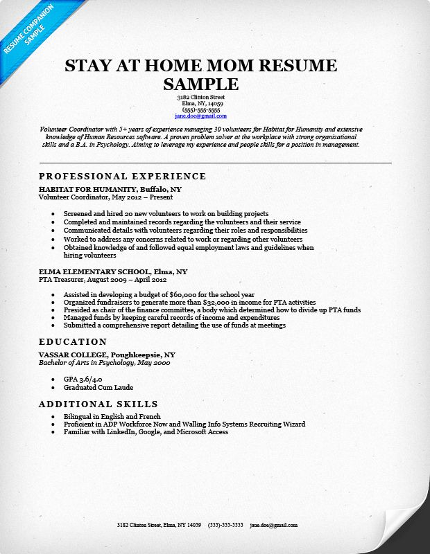 reentering the workforce resume examples best of back to work dscmstat basic cv and bio Resume Reentering The Workforce Resume Examples