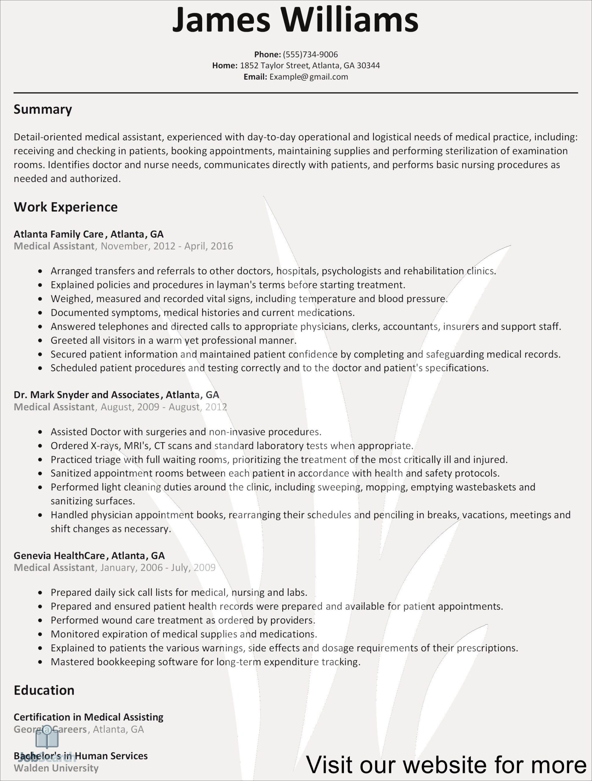 resume example assistant manager in template professional student of for free history Resume Example Of A Professional Resume For Free