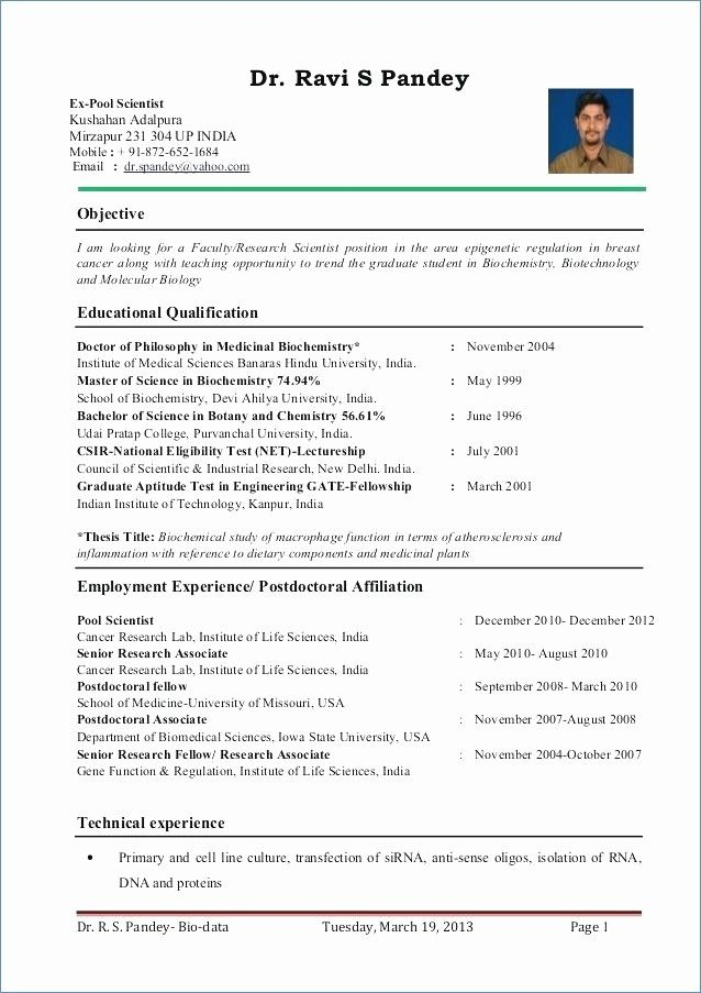 resume format for zoology lecturer teacher template examples professor attention target Resume Resume Template For Professor