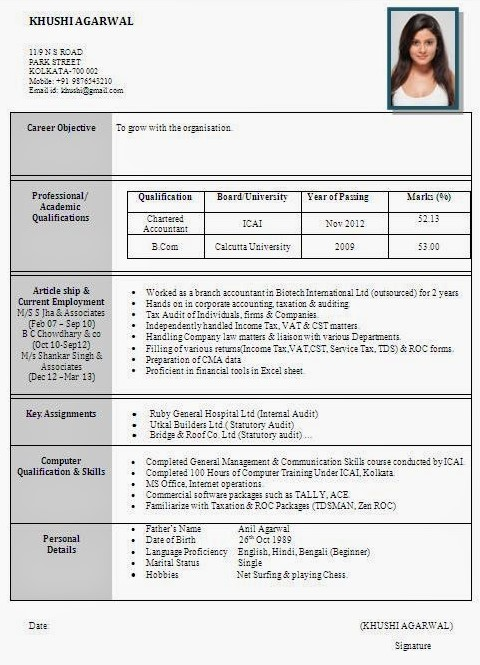 resume format used in templates indian examples entry level computer science mistakes Resume Indian Resume Format Examples