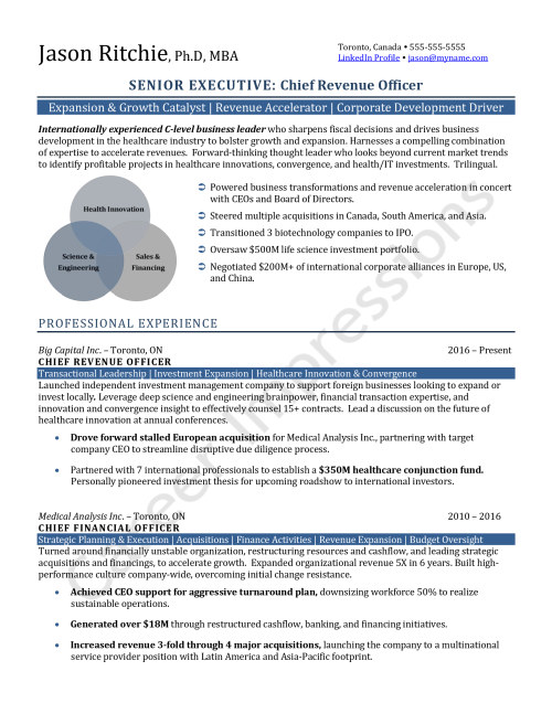 resume samples career impressions executive resumes for job seekers cfo and cro chemical Resume Resume Samples For Job Seekers