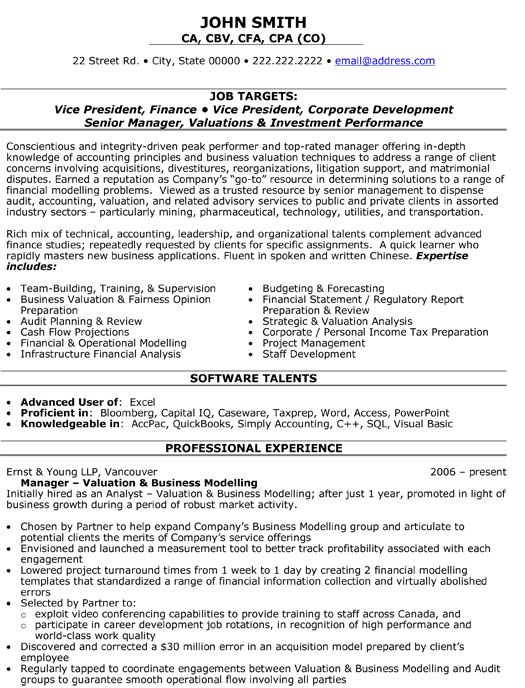 resume template for vice president of finance you can it and make your own executive job Resume Vice President Technology Resume
