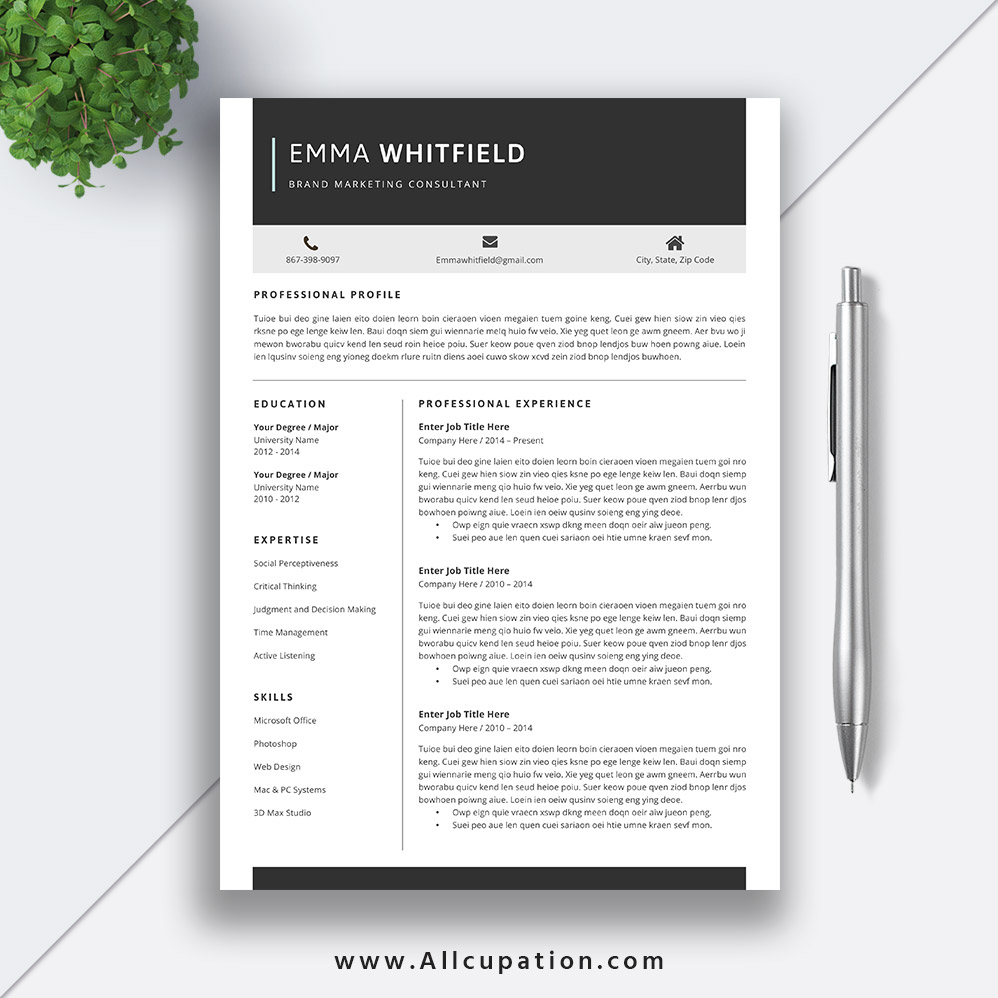 resume templates for job application creative and professional cv template cover letter Resume Job Application Resume Template