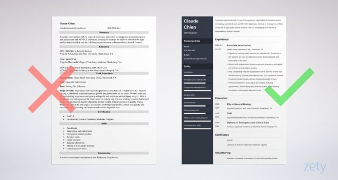 veterinarian resume examples guide template skills and abilities example gym manager Resume Veterinarian Resume Skills And Abilities