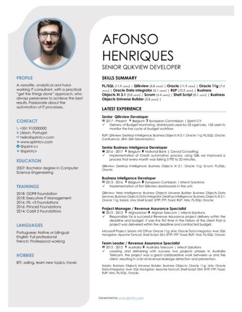 which cv template should an it professional use sprint resume design eyewear consultant Resume Eyewear Consultant Resume