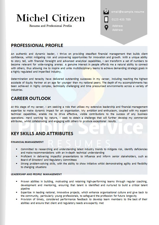 academic resume selection criteria writers public service resumes and psr example Resume Resume And Selection Criteria Writers