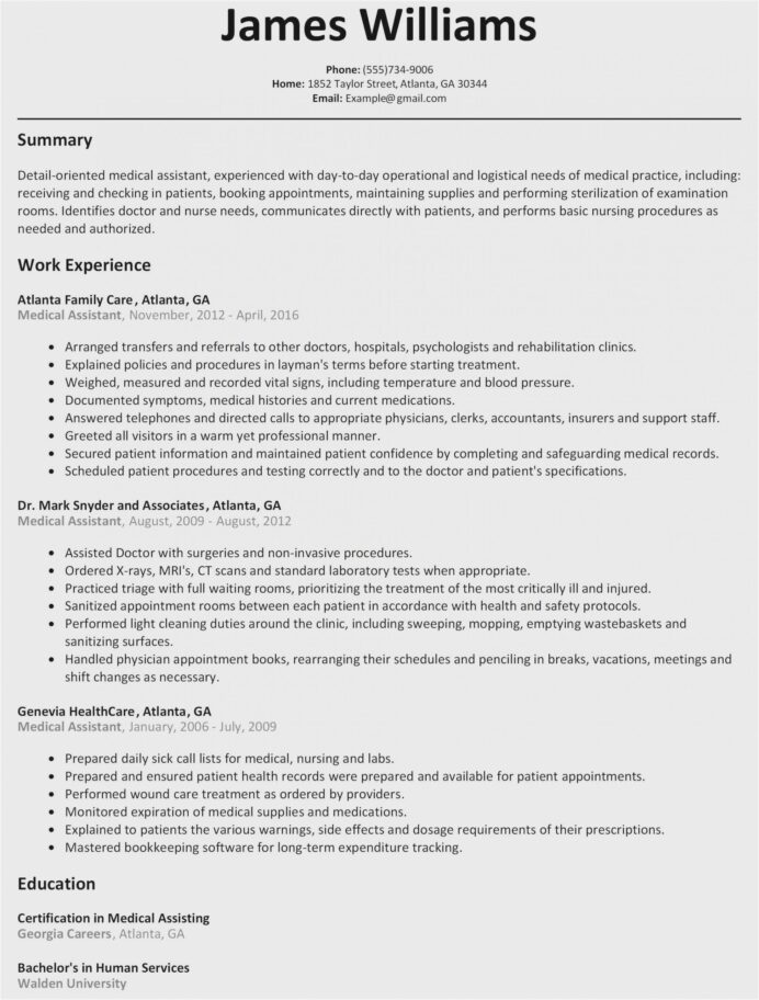 accountant resume sample free chartered format scaled objective examples for software Resume Chipotle Resume Example
