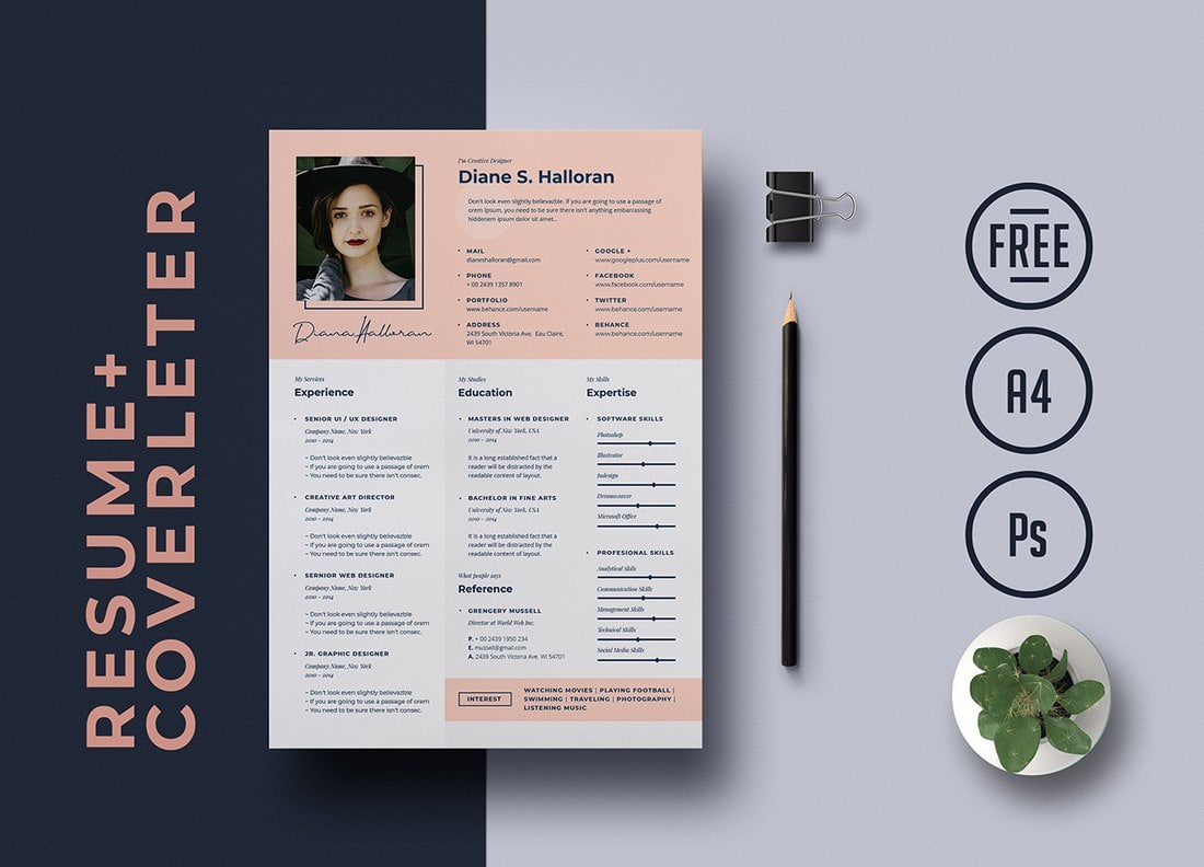 best cv resume templates design shack free for creative template finance examples Resume Free Resume Templates For 2020