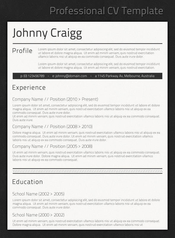 best professional resume templates looking cv1 accounting examples college student Resume Professional Looking Resume