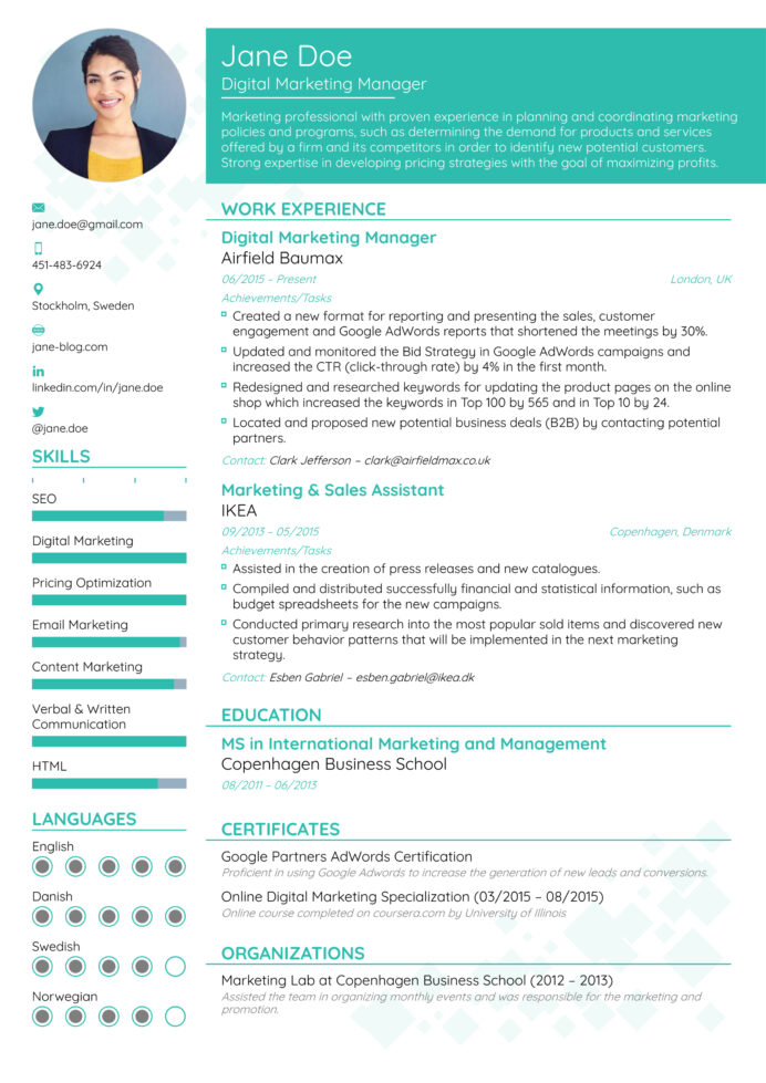 best resume formats for professional templates most updated format business analysis free Resume Best Professional Resume Format