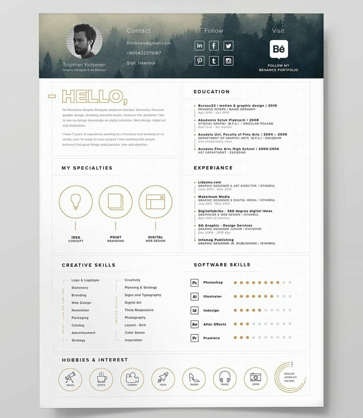 best resume templates for top picks to looking format environmental engineer assistant Resume Best Looking Resume Templates