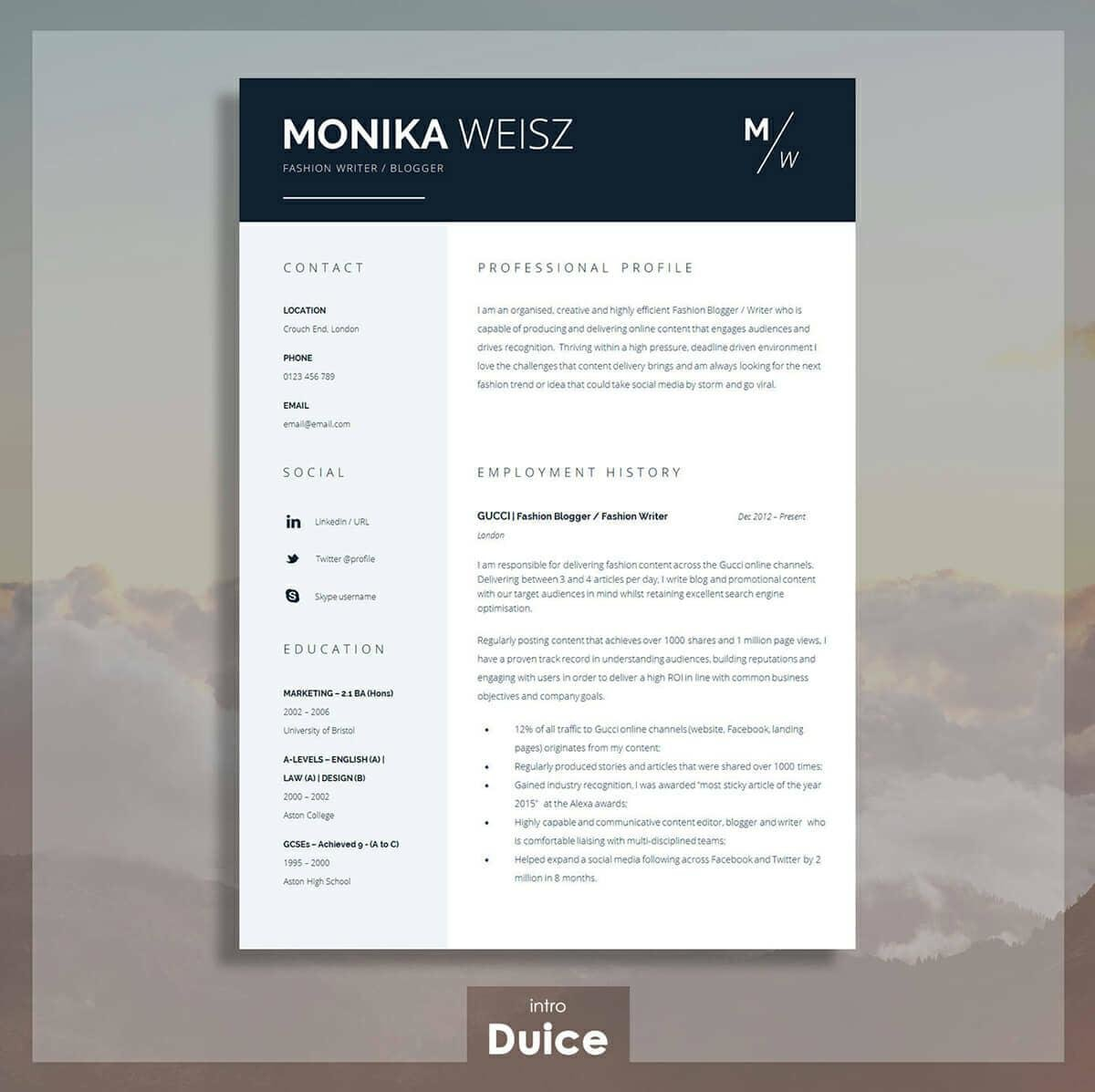 best resume templates for top picks to new the professional writers snf nurse pmo job Resume Best New Resume Templates