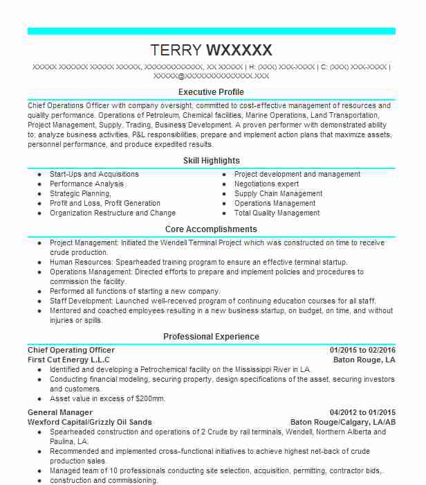 chief operating officer resume example resumes livecareer bootcamp maintenance job Resume Chief Operating Officer Resume