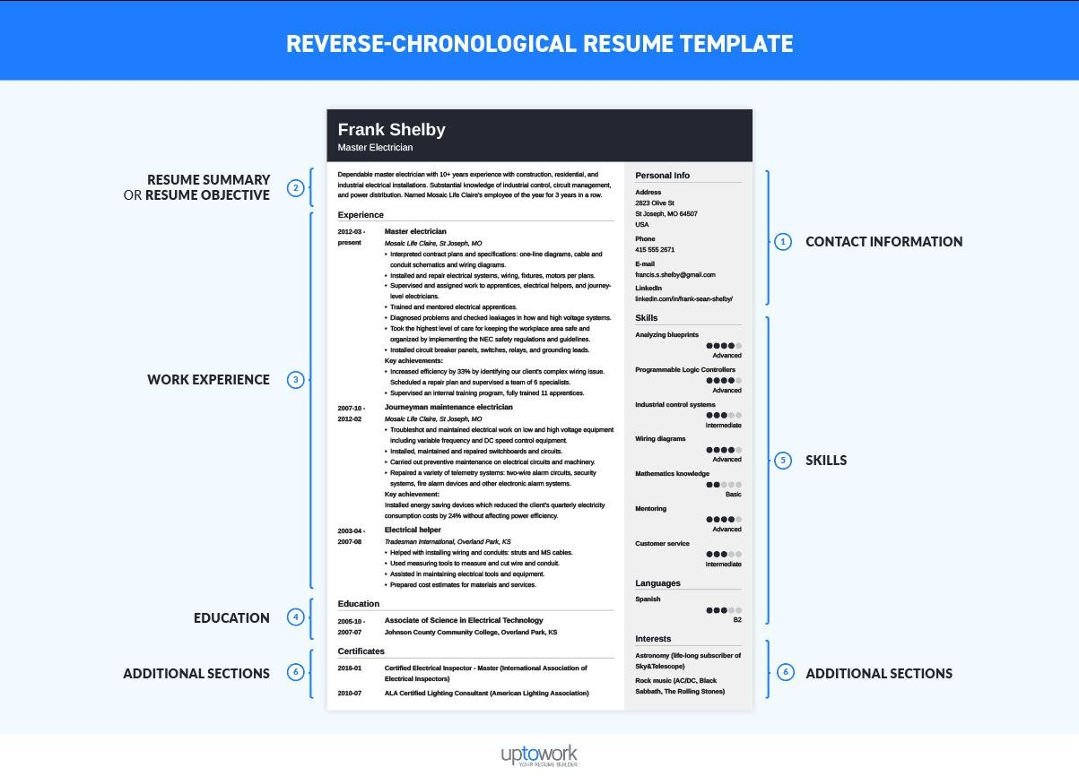 chronological resume template format examples builder free reverse sample social science Resume Chronological Resume Builder Free