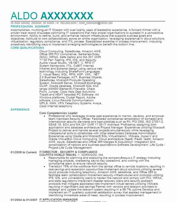 core competencies resume example solomon technology solutions cary north carolina Resume Core Competencies Resume Examples