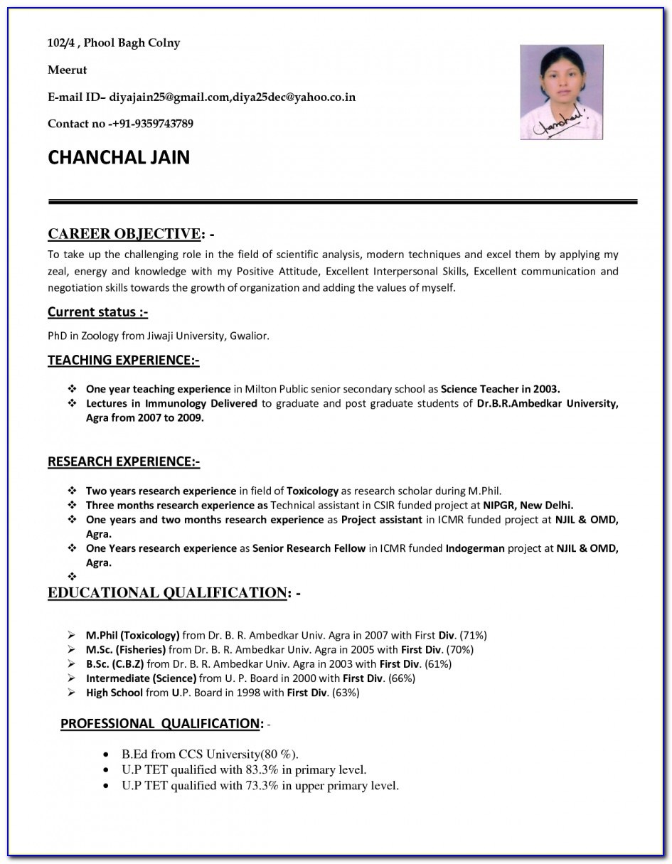 cv format pdf for teaching job free templates with inside resume vincegray2014 driver Resume Free Resume Templates Pdf