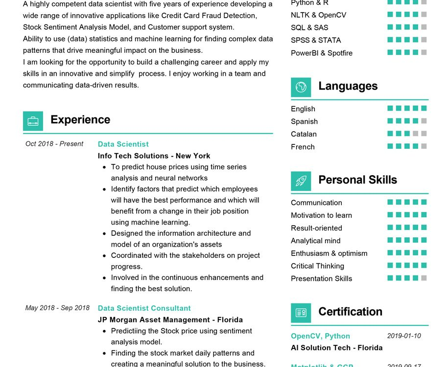 data scientist resume sample cv resumekraft projects for science example 913x750 front Resume Projects For Data Science Resume