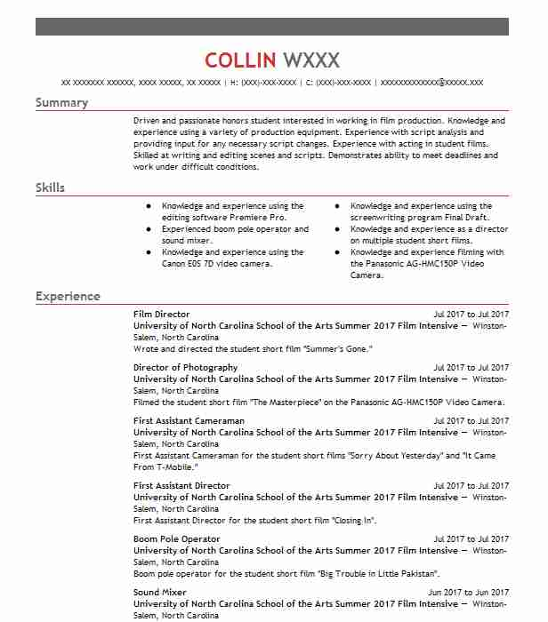 film director resume example resumes livecareer industry format directions create your Resume Film Industry Resume Format