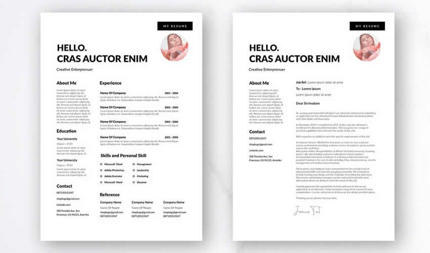 free professional adobe indesign resume templates for cv template accounting clerk sample Resume Resume Templates For Adobe Indesign