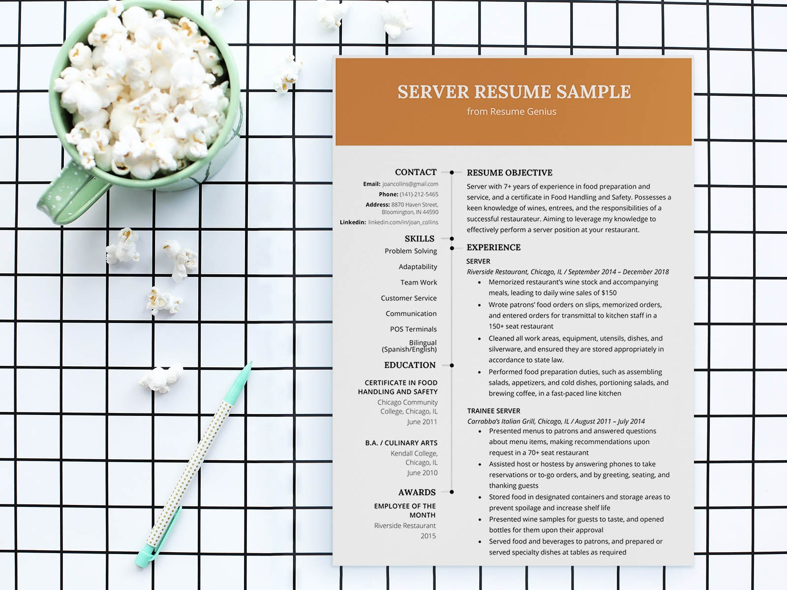 free server restaurant resume template with sample text work experience accountant best Resume Server Resume Template Free