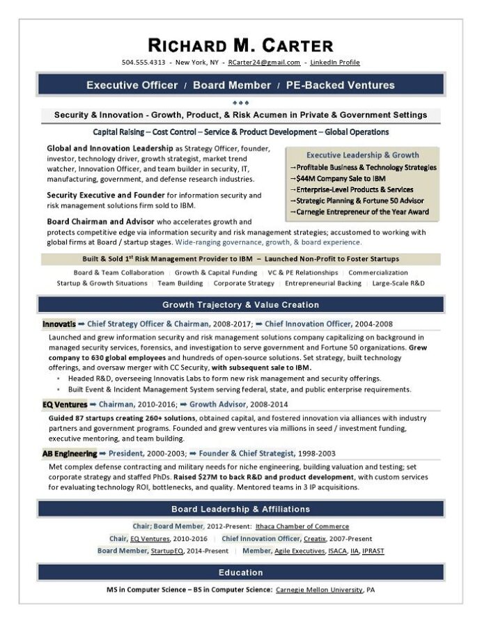 it director sample resume cio writing by former recruiter executive examples cover letter Resume Professional Executive Resume Writer