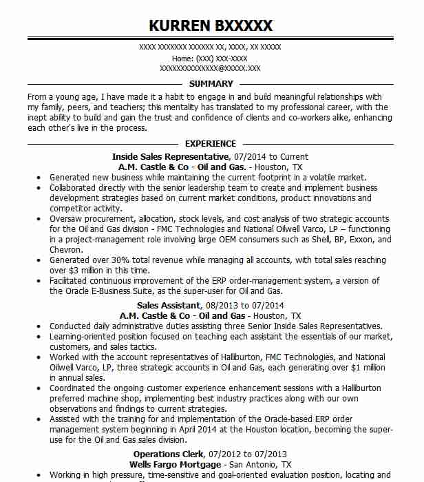 professional inside representative resume examples livecareer template biodata Resume Inside Sales Resume Template