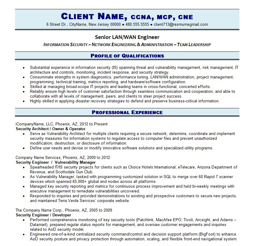 professional it resume writing guild new age templates resume2 patient access director Resume New Age Resume Templates